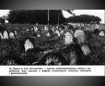 ז'בנו - בית קברות טיפוסי לעיירות קטנות